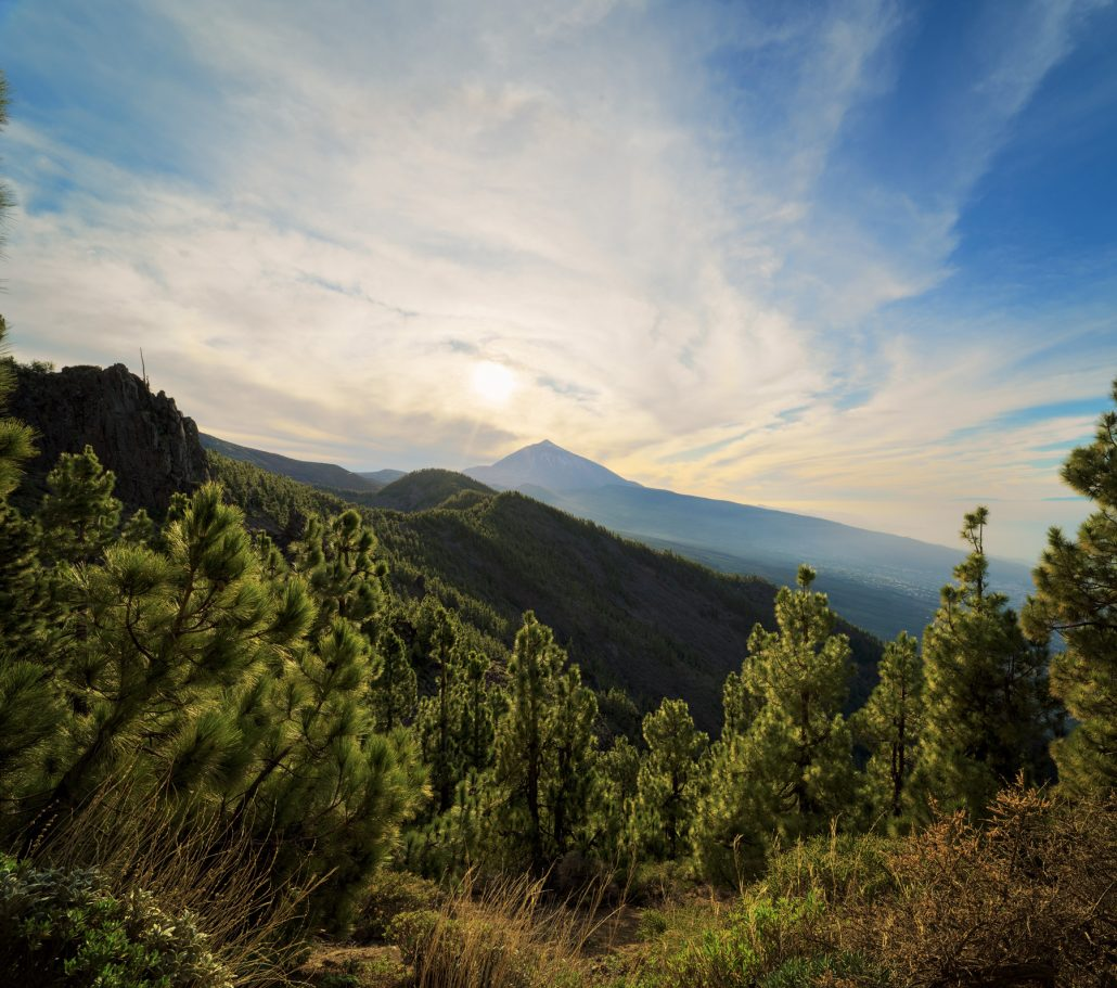 Ayose, Tenerife