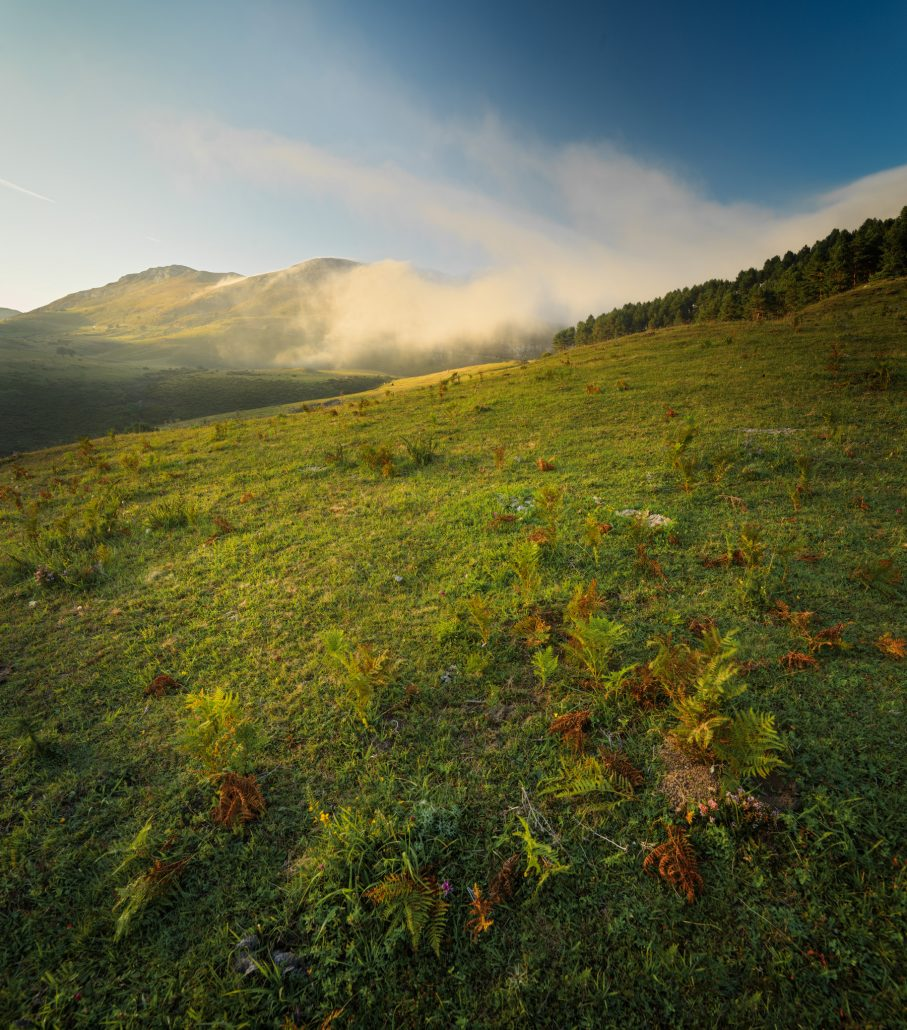 Saja Besaya Natural Park, Cantabria