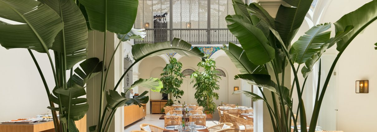Fotografías del hotel H10 Palacio Colomera