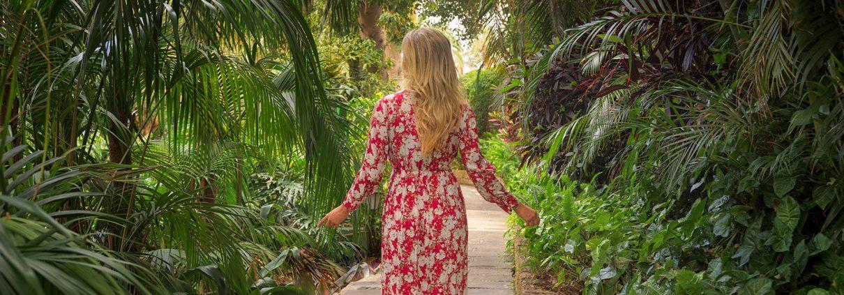Fotografías para el hotel gran lujo Botánico